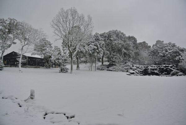 雪です☃️本日臨時休業させていただきます。