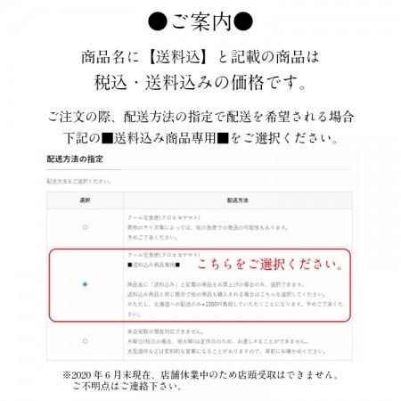 【送料込】贈答用 熊本県生産直売 数量限定 手作りソーセージ ビッグソーセージセット【E-5】