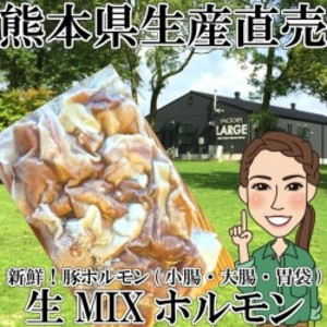 【冷凍】モンヴェールポーク 生ホルモン1kg (大腸・小腸・胃袋(ガツ)) 豚ホルモン