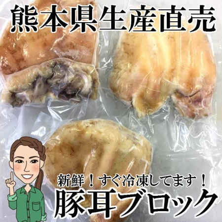 【冷凍】豚耳 ミミガー 1個約200g 耳ブロック
