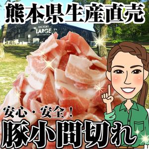 熊本県生産直売 豚こま切れ 500g モンヴェール農山 モンヴェールポーク