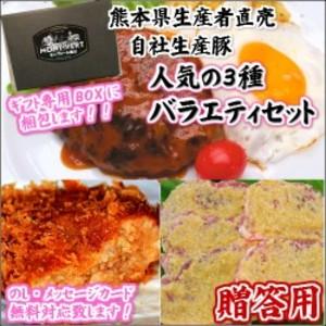 敬老の日・贈答用 バラエティセット メンチカツ&ハンバーグ&モモ味噌漬【M-12】